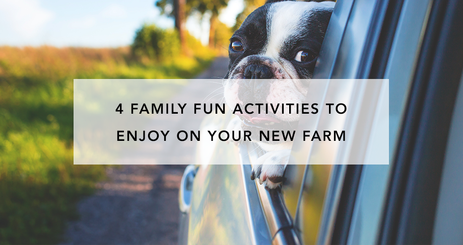 4 Family Fun Activities to Enjoy on Your New Farm