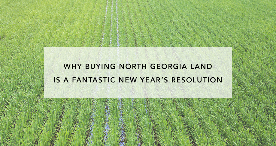 Why Buying North GA Land Is a Fantastic New Year's Resolution