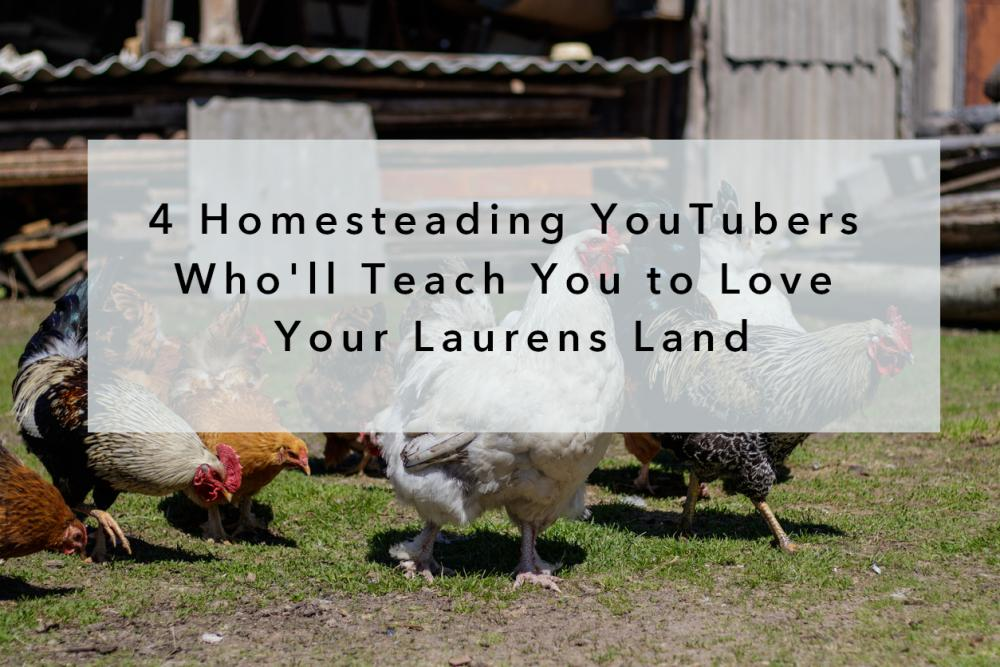 4 Homesteading YouTubers Who'll Teach You to Love Your Laurens Land