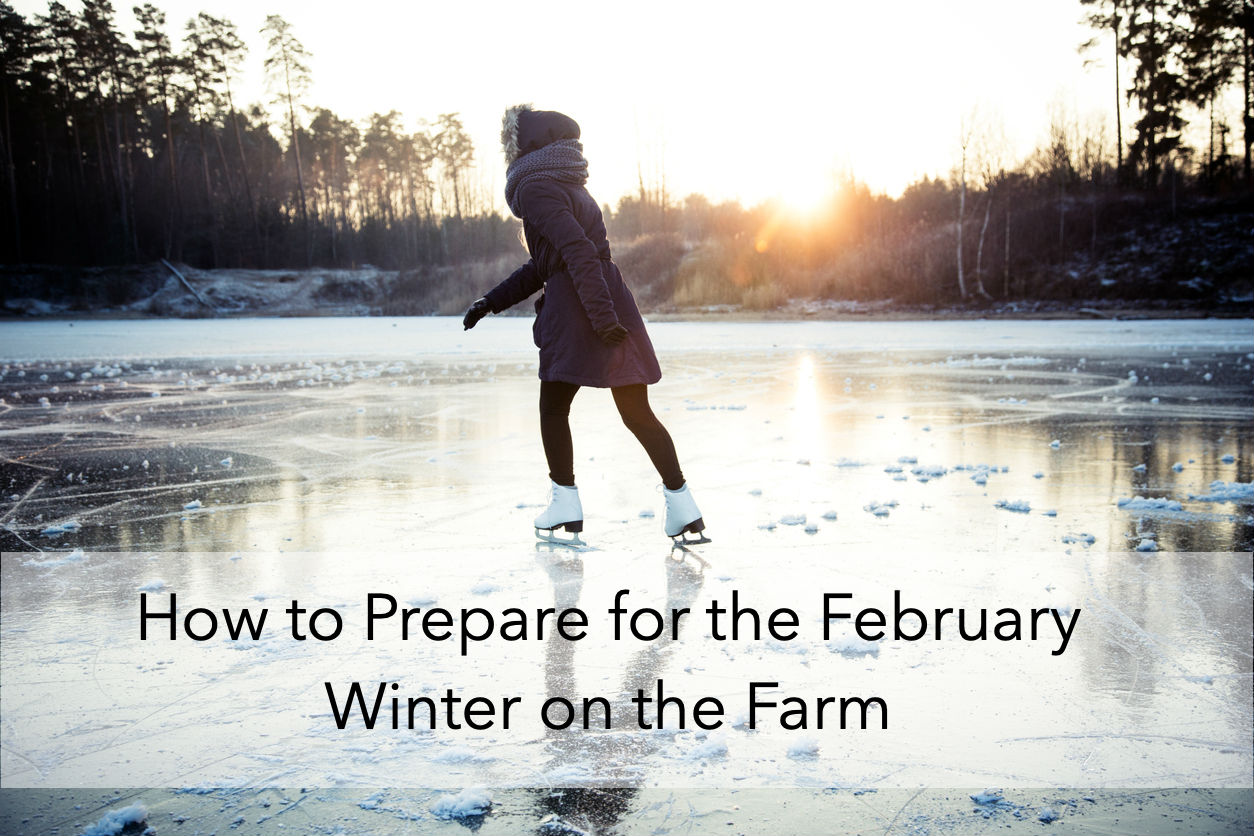 How to Prepare for the February Winter on the Farm