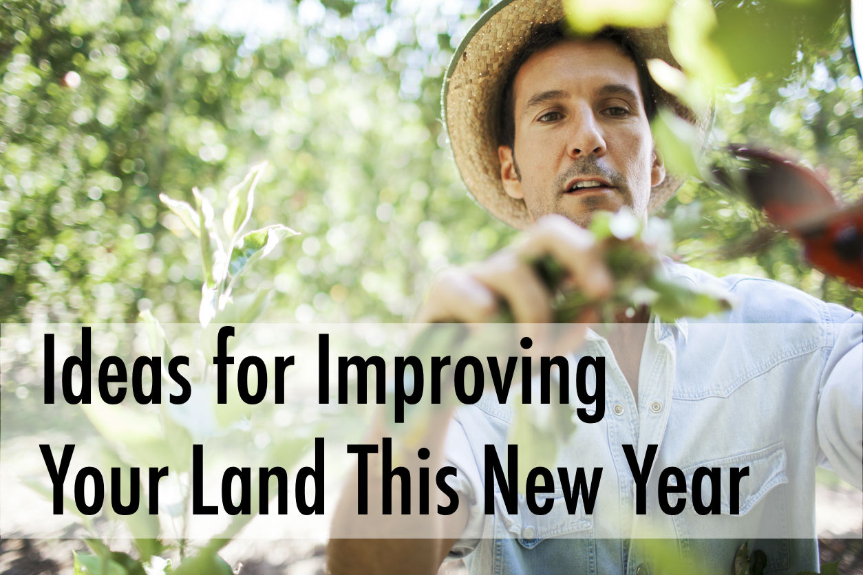 Ideas for Improving Your Land This New Year