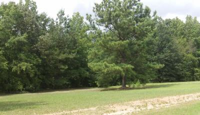 Hurdle Land for Sale in Henry County, Georgia