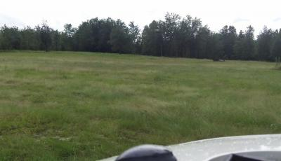 Hurdle Land for Sale in Blount County, Alabama