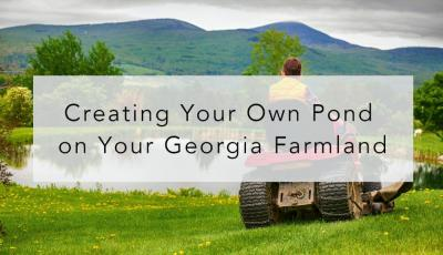Creating Your Own Pond on Your Georgia Farmland