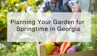 Planning Your Garden for Springtime in Georgia