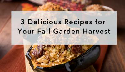 3 Delicious Recipes for Your Fall Garden Harvest