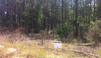 Hurdle Land for Sale in Newton County, Georgia