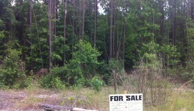 Hurdle Land for Sale in Crawford County, Georgia
