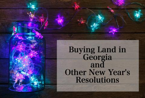 Buying Land in Georgia and Other New Year's Resolutions