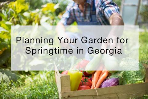 Planning Your Garden for Springtime in Georgia