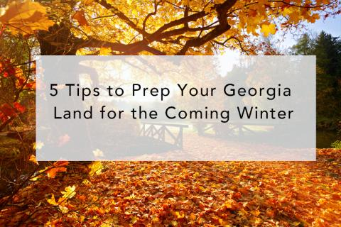 5 Tips to Prep Your Georgia Land for the Coming Winter