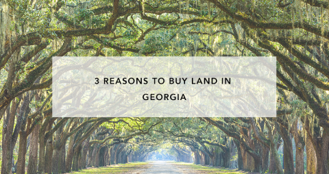3 Reasons to Buy in Georgia