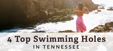 swimming in tennessee