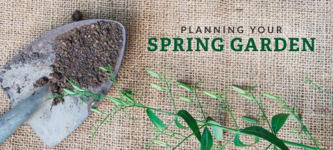 planning spring garden