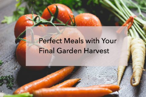 Perfect Meals with Your Final Garden Harvest