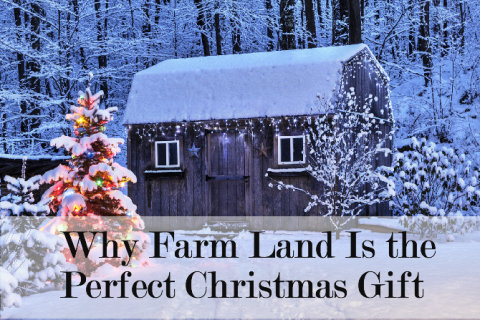 Why Farm Land Is the Perfect Christmas Gift