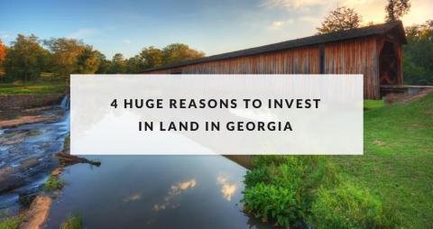 invest in georgia image