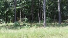 Hurdle Land for Sale in Jasper County, Georgia