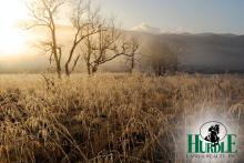 Hurdle Land for Sale near Atanta, Georgia