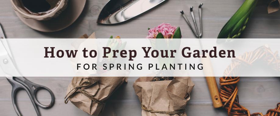 prep garden for spring planting