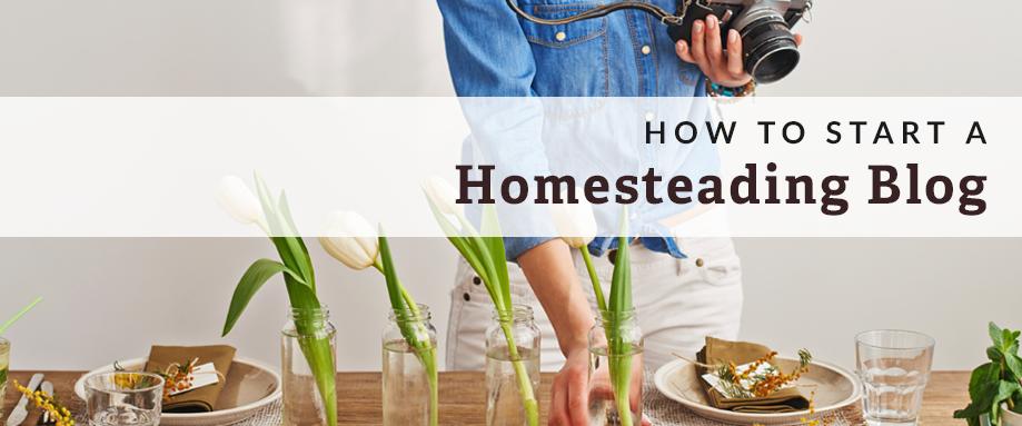start a homesteading blog